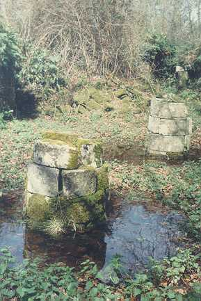 Bindon Abbey ruins, day-room